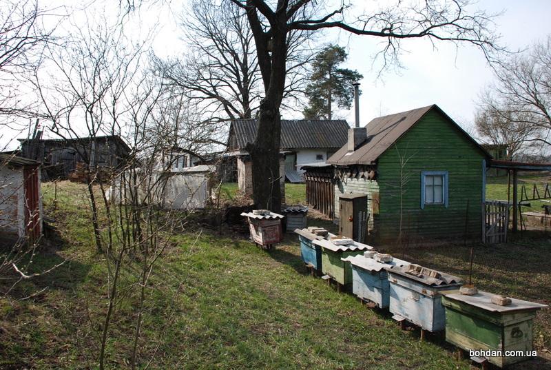 вулик український вулики бджоли